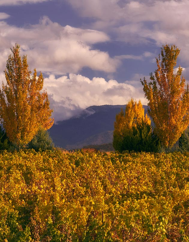Southern Rogue Valley Wine Route